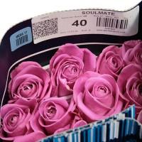 Роза Soulmate