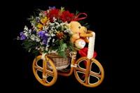 Медведь на велосипеде  композиция 0401