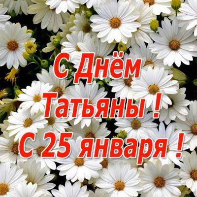 К дню Татьяны и студентов (25 января)
